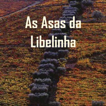 capa-frente_asas-da-libelinha_